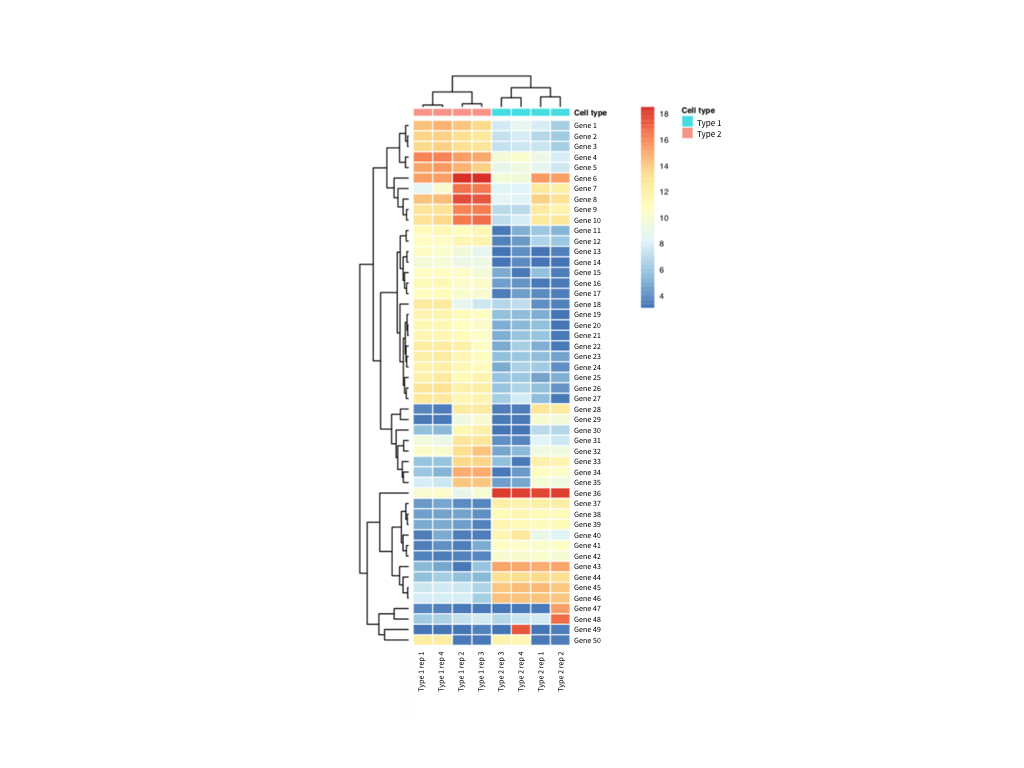 Heatmap visualization and hierarchical clustering of RNA-sequencing expression data