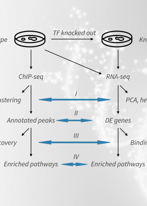 Integrative analysis of RNA-seq and ChIP-seq data